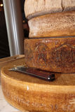 Selezione dei tipi differenti di formaggi Immagini Stock Libere da Diritti