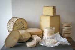 Selezione del formaggio Immagine Stock Libera da Diritti