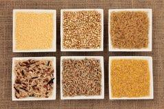 Selezione del granulo e del cereale Fotografie Stock Libere da Diritti
