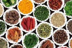 Selezione dell'alimento della spezia e dell'erba Immagini Stock Libere da Diritti