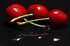Selezione della ciliegia Fotografie Stock