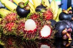 Selezione della frutta tropicale Fotografia Stock Libera da Diritti