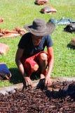 Selezione della vaniglia dal Madagascar Immagini Stock Libere da Diritti