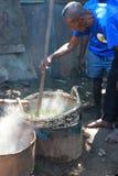 Selezione della vaniglia dal Madagascar Immagine Stock Libera da Diritti