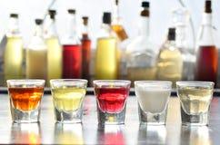 Selezione delle bevande alcoliche Insieme di vino, brandy, liquore, tintura, cognac, whiskey in vetri, bottiglie Grande varietà d Immagini Stock