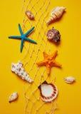 Selezione delle conchiglie e delle stelle marine Fotografia Stock Libera da Diritti