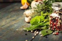 Selezione delle spezie e delle erbe Fotografia Stock