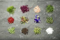 Selezione di micro erbe su una disposizione del piano del fondo dell'ardesia Immagine Stock Libera da Diritti