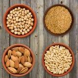 Selezione eccellente dell'alimento del seme in ciotole Fotografie Stock