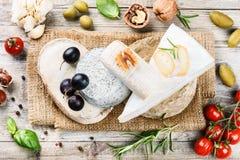 Selezione fine di formaggio francese Fotografia Stock
