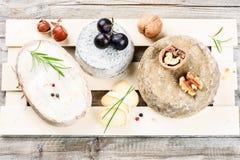Selezione fine di formaggio francese Immagine Stock