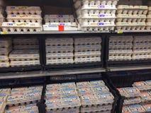 Selezione Fred Meyer Springfield dell'uovo, O Immagine Stock
