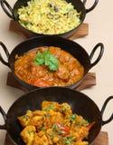 Selezione indiana del curry Immagini Stock Libere da Diritti