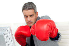 Self-assured businessman with boxing gloves Royalty Free Stock Photography