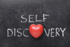 Self discovery heart Royalty Free Stock Images