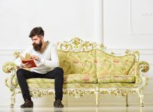 Self education concept. Guy reading book with attention. Macho on concentrated face reading book, studying. Man with. Beard and mustache sits on baroque style Stock Photography