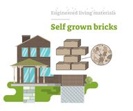 Self Grown Bricks - Engineered Living Material Royalty Free Stock Photos