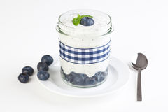 Self made fresh blueberry yogurt Royalty Free Stock Photos