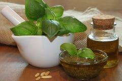 Self made green Pesto Royalty Free Stock Photos