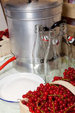 Self made red currant syrup. Kitchen utensils and ingredients for manufacturing of currant syrup Stock Image