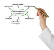 Self Management Competencies Stock Image