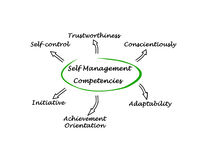 Self Management Competencies Stock Photography