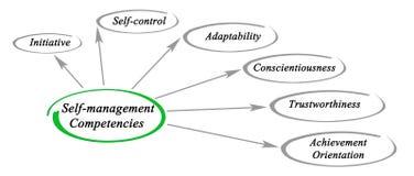 Self-management competencies. Diagram of self - management competencies Royalty Free Stock Photos