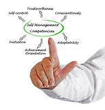 Self Management Competencies Royalty Free Stock Images