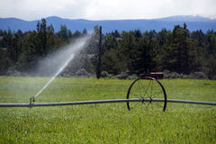 Self propelled irrigation sprayers Royalty Free Stock Photography