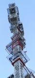 Self rising crane Stock Photography