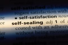 Self sealing. Word in a dictionary.  concept royalty free stock image