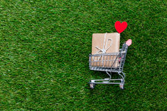 Self-service supermarket shopping trolley cart with gift box. On spring or summer green grass lawn background Royalty Free Stock Photography