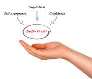 Self - Trust. Presenting diagram of Self - Trust stock images