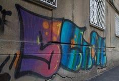 Selfie街道画 库存照片