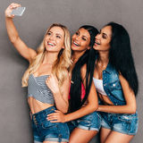 Selfie amical Images stock