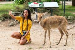 Selfie asiático da mulher com os cervos do ` s de Eld foto de stock