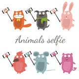 Selfie with cartoon animals .Vector Royalty Free Stock Photography