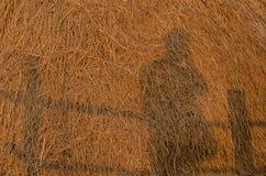 Selfie, cień fotograf przeciw słomianemu rozsypisku Fotografia Stock