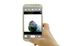 Selfie concept Stock Photography