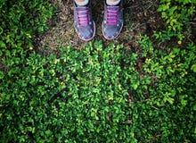 Selfie de pies y la zapatilla de deporte se colocan en fondo de la hierba verde imagenes de archivo