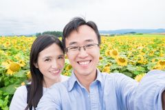 Selfie delle coppie con il girasole Fotografia Stock