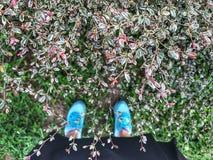 Selfie des pieds et espadrille se tiennent sur le fond d'herbe verte Photos libres de droits