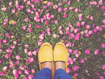 Selfie feet wearing yellow shoes on pink bougainvillea flower an Royalty Free Stock Images