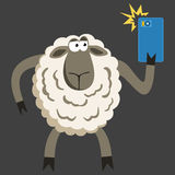 Selfie goofy sheep vector illustration Stock Photo
