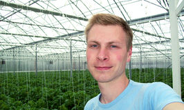 Selfie in greenhouse. Selfie with young plant of tomatoes in greenhouse Royalty Free Stock Photos