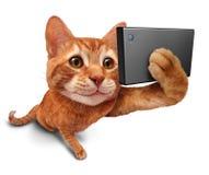 Selfie katt vektor illustrationer