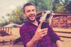 Selfie with llama. Stock Photo