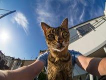 Selfie med Savannahkatten royaltyfria bilder