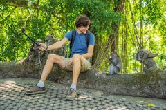 Selfie with monkeys. Young man uses a selfie stick to take a photo or video blog with cute funny monkey. Travel selfie with. Wildlife in Bali stock photos