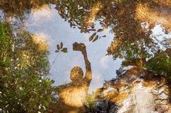 Selfie skugga på klart flodvatten Royaltyfria Foton